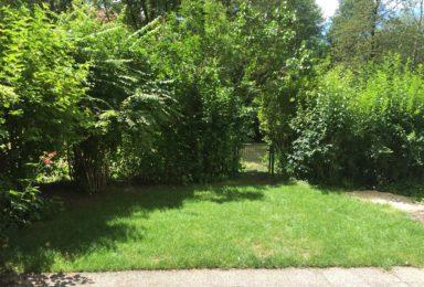 München Schwabing: Garten-Terrassen-Wohnung in ruhiger grüner Lage