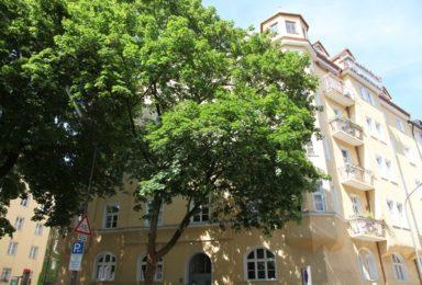 München Au: Großzügige Altbau Wohnung auf einer Ebene